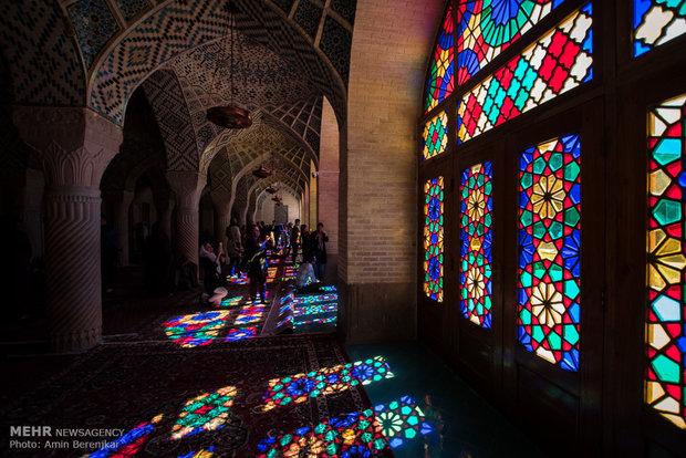 payantitr: shiraz