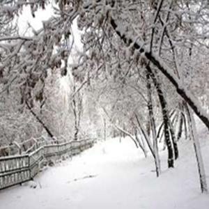 پایان تیتر: برف تهران