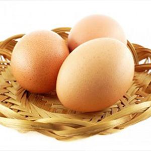 مصرف مرغ و تخم مرغ های محلی ممنوع است