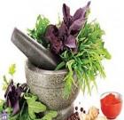 پایان تیتر: گیاهان دارویی