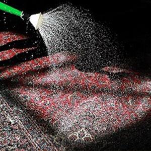 فریب زرق و برق شرکتهای قالیشویی را نخورید + قیمتها
