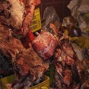 ۱۰۸۸۳ کیلوگرم مواد غذایی فاسد معدوم شد