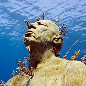 موزهای شگفتانگیز در اعماق آبها +تصاویر