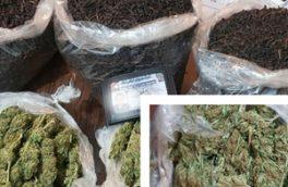 «ماریجوانا» در بستههای چای کشف شد