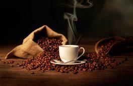گران ترین قهوه جهان با مدفوع + عکس
