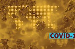 ۵۳ میلیون کرونایی فقط با ویروسی به اندازه یک قاشق چایخوری!