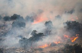 تکذیب خبر آزادی مسببین آتش سوزی خائیز